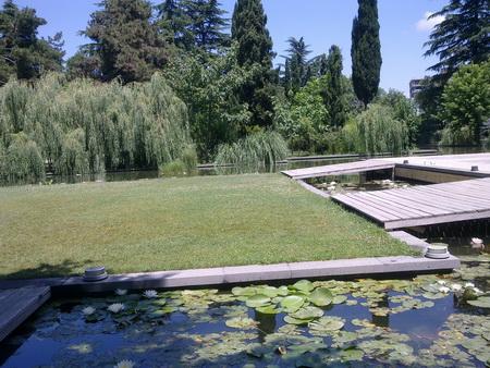 Экспо Грузия: отдых на территории выставочного комплекса