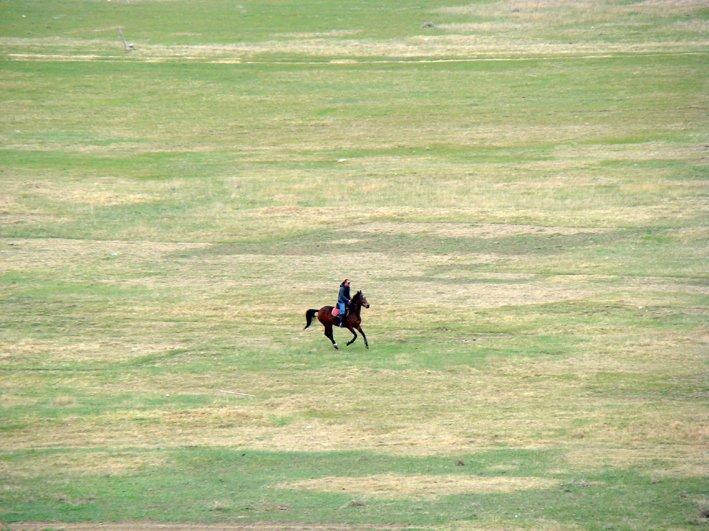 Конные прогулки в Тбилиси