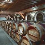 "Museum of Vine and Wine ""Vazioni"""
