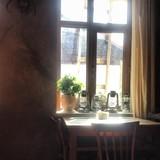 Cafe 5047 m
