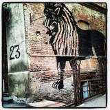შავი ლომი