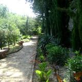 Dendrology Museum (Botanical Garden)