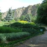 დენდროლოგიური მუზეუმი (ბოტანიკური ბაღი)