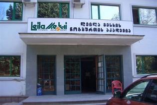 Leila Meskhi Tennis Academy